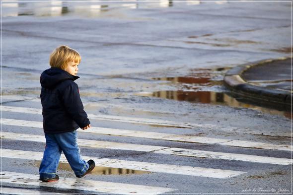 В Смоленске стартовала акция «Пешеход»