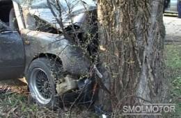 В Рославле водитель пострадал при столкновении с деревом.