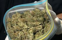 Смоленские полицейские задержали автомобиль с большой партией марихуаны.