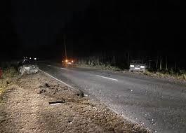 Под Смоленском в аварии пострадали два человека.
