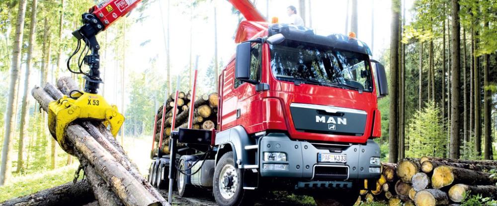 Выбор транспорта для перевозки леса