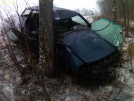 В Смоленской области Фольцваген Пассат врезался в дерево