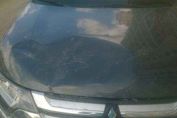 В Смоленске ищут вандала, проскакавшего по 10 автомобилям