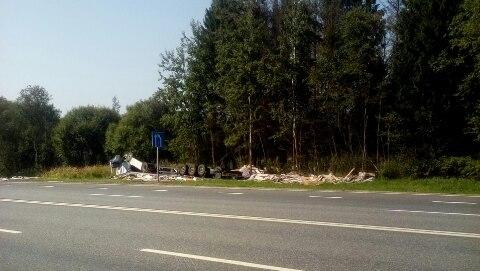 В Смоленской области «Ауди А6» вылетела в кювет