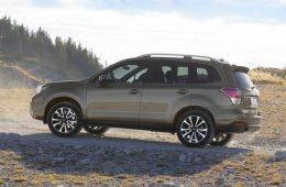 Известны сроки премьеры Subaru Forester нового поколения