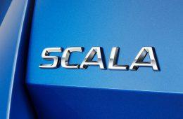 Skoda придумала название для новой модели