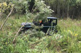 Микроавтобус насмерть сбил двух лосей на трассе