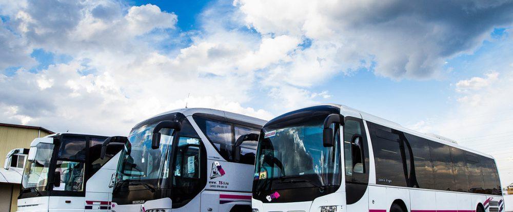 Почему для поездки пассажиры выбирают автобусы