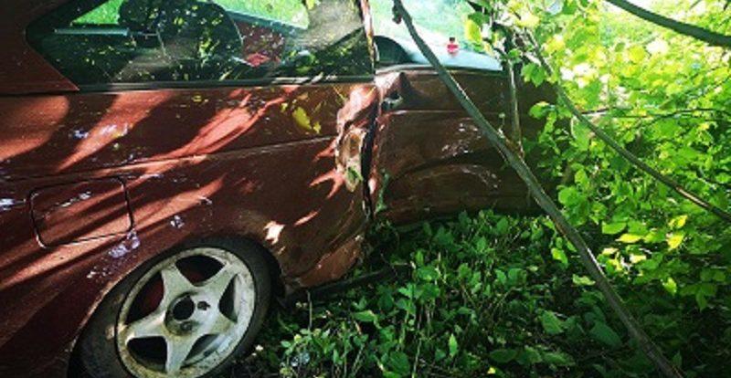 В смоленском райцентре водитель «двенашки» протаранил дерево