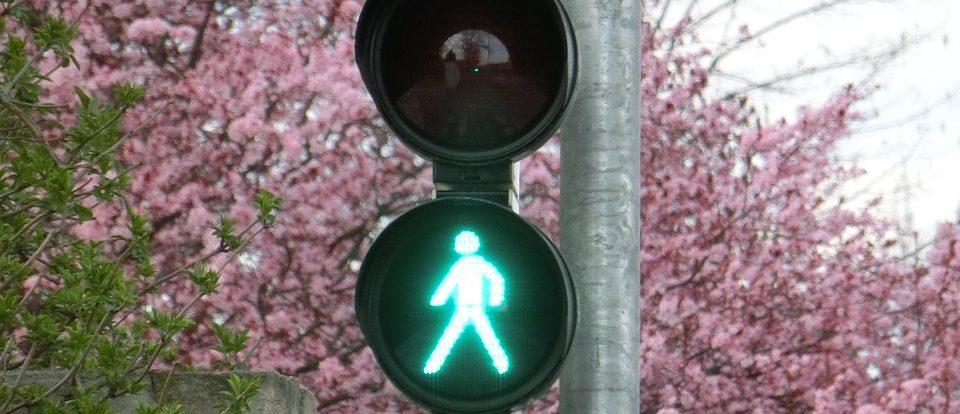 В Смоленской области ГИБДД проводит операцию «Пешеход»